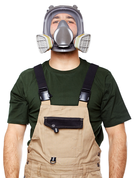 mold remediation denton texas