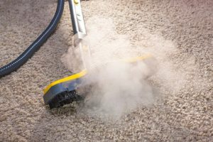 carpet cleaner dallas tx