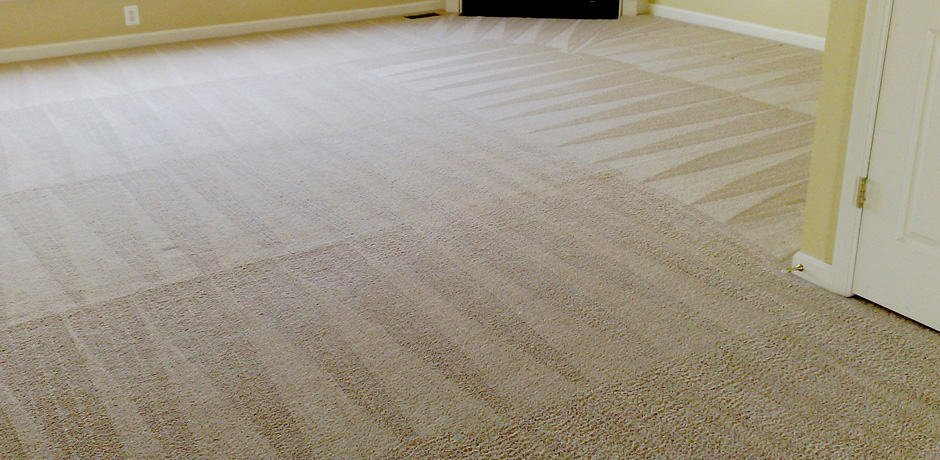 carpet cleaner dallas